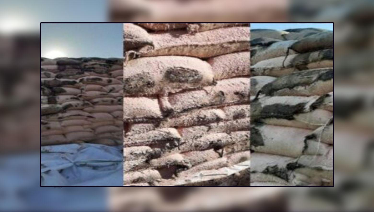 الأرز والقهوة والحليب الفاسدة بميناء رادس